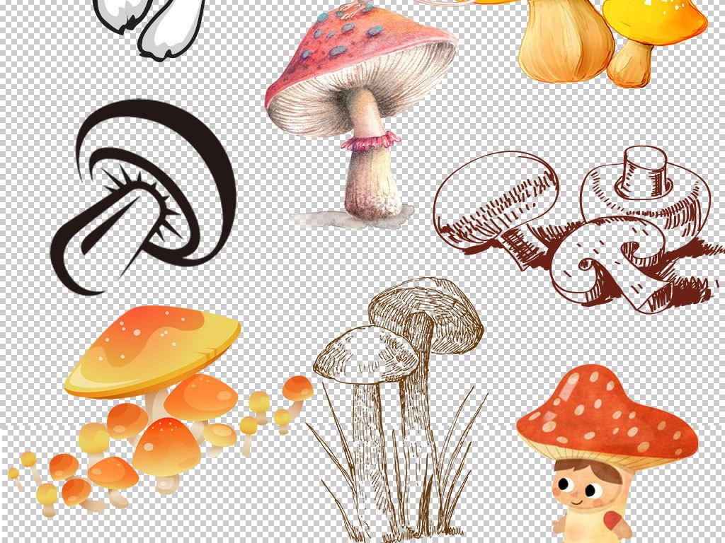 手绘梦幻蘑菇图片设计海报素材