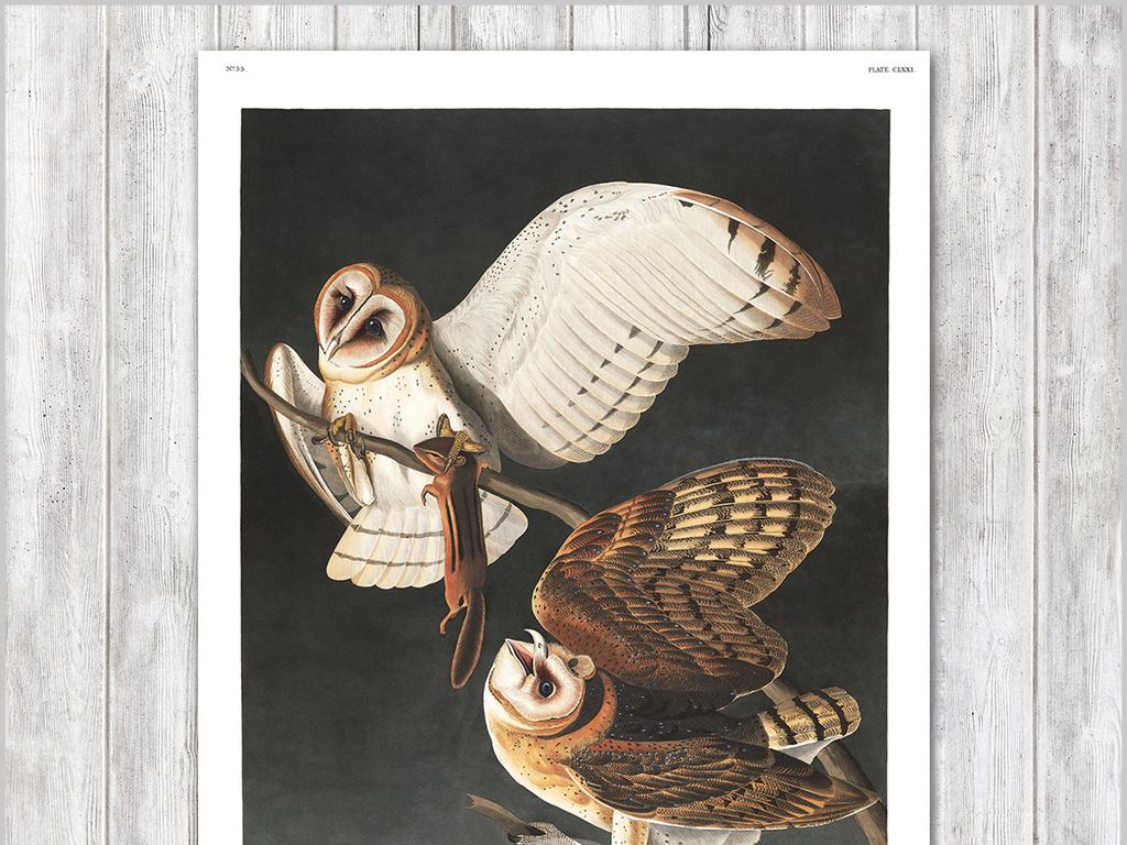 现代简约手绘北欧风猫头鹰装饰画无框画