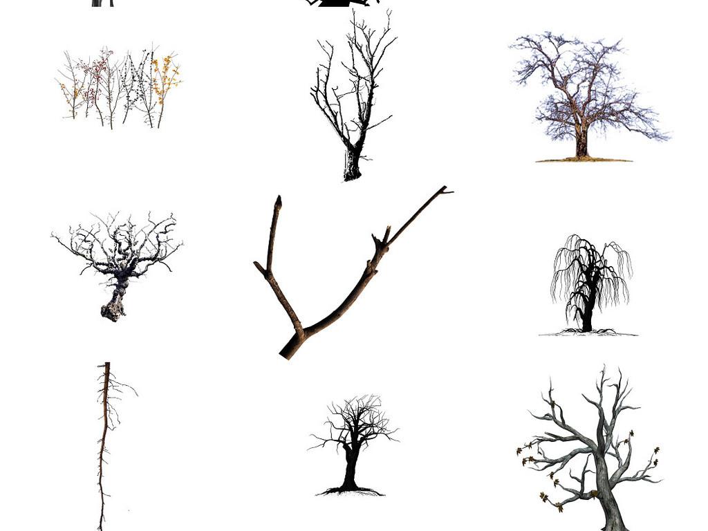 我图网提供精品流行枯树树枝树干免抠png透明素材集1下载,作品模板源文件可以编辑替换,设计作品简介: 枯树树枝树干免抠png透明素材集1 位图, RGB格式高清大图,使用软件为 Photoshop CS5(.png) 枯树树枝树干 免抠png 透明素材集1
