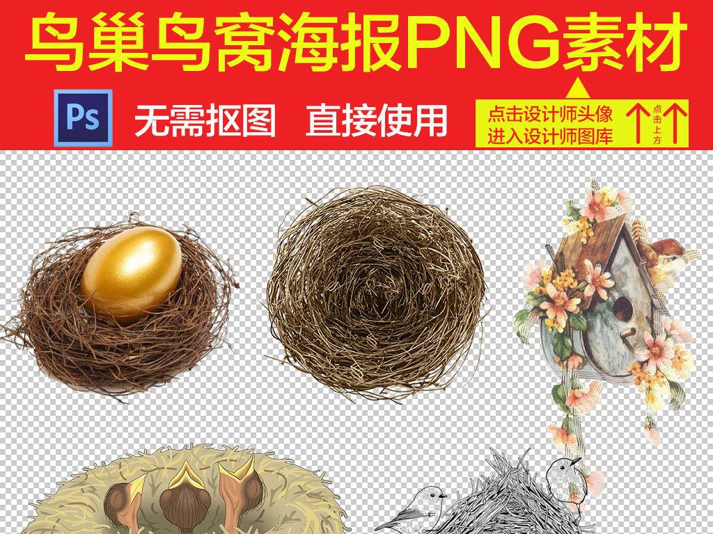 鸟窝鸟巢实物图片海报素材
