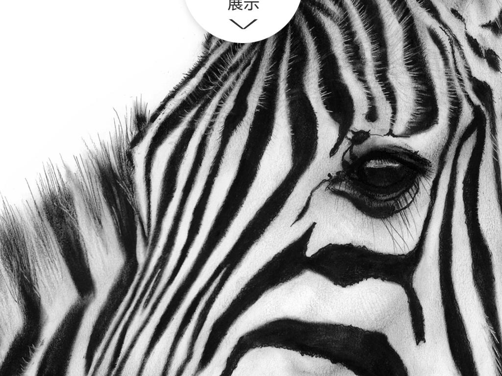 黑白唯美简约斑马装饰画
