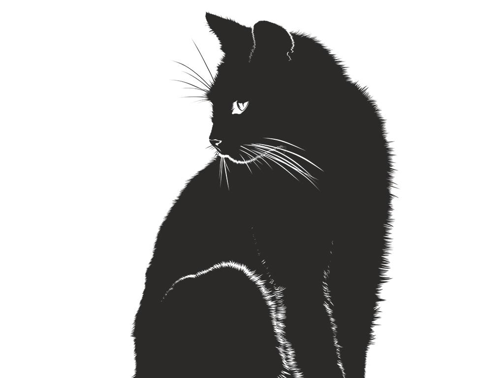 图案黑猫产品小猫图卡通手绘猫