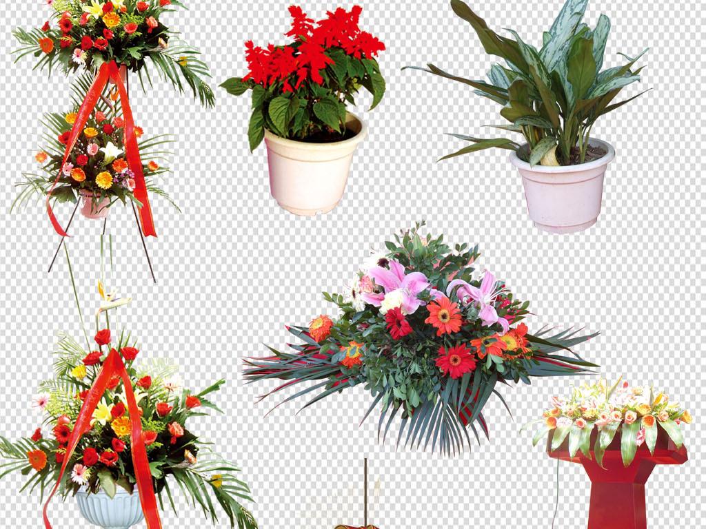 喜庆节日舞狮舞龙婚礼花篮鲜花T台舞台椅子婚礼春节素材