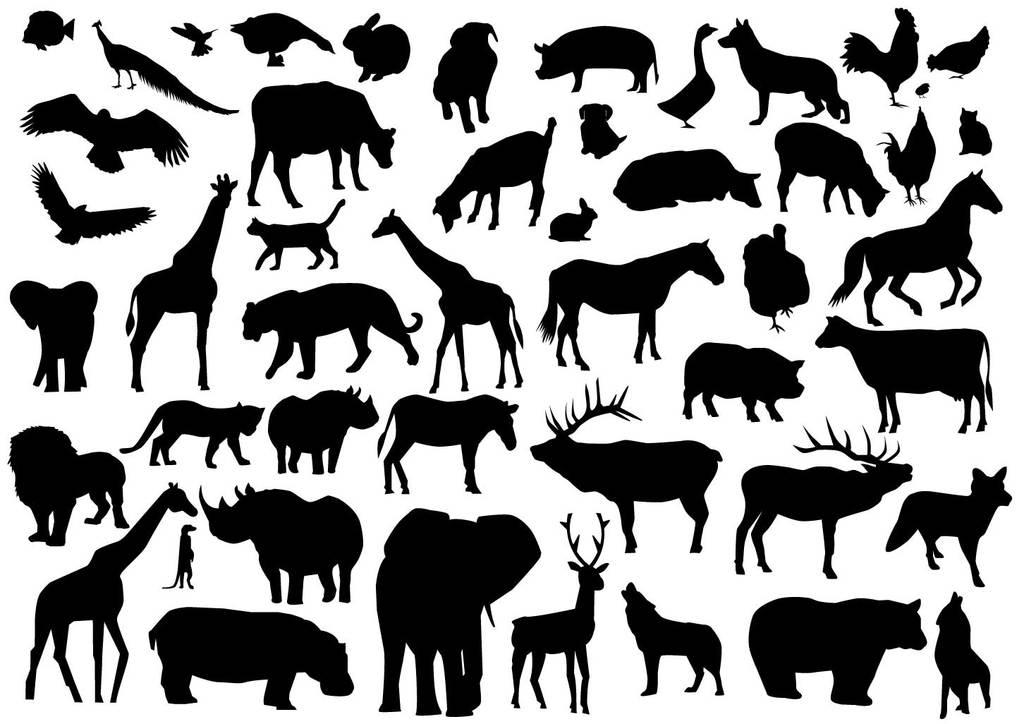 所有动物剪影合集家禽鱼类牛猫狗狮子大象