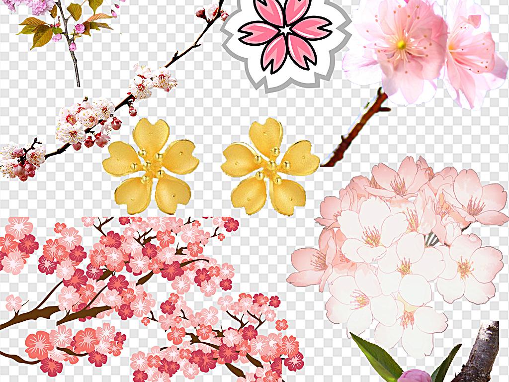 樱花飘落樱花边框樱花节樱花花瓣日本樱花图片