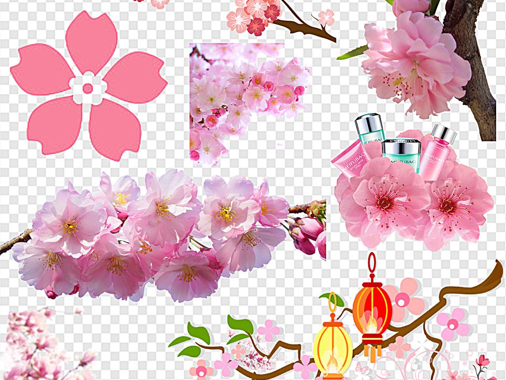 png)樱花边框樱花花瓣手绘樱花樱花背景日本粉色清新