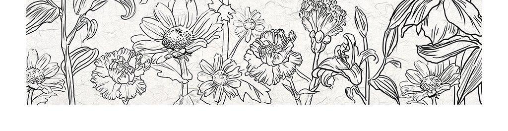 手绘黑白花卉背景墙