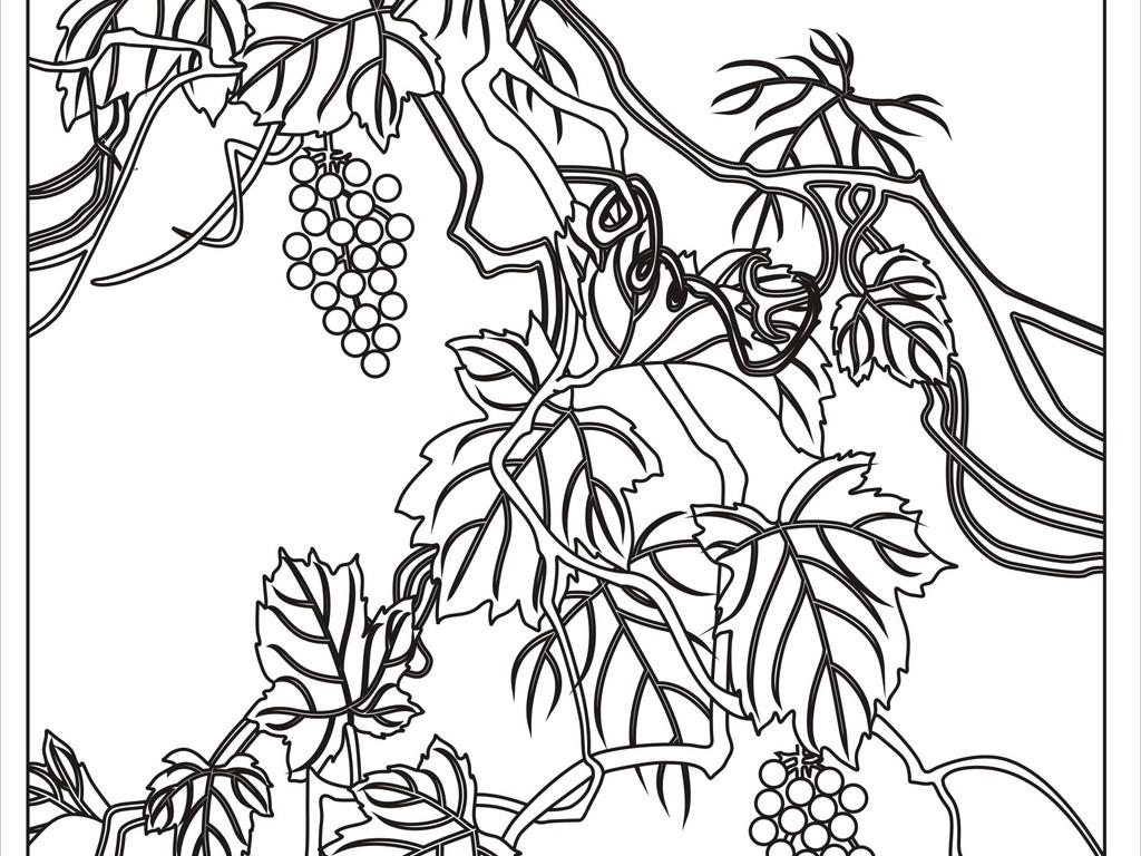 葡萄葡萄树