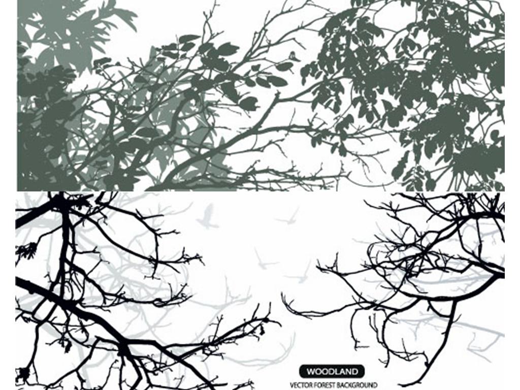 枝蔓                                          树枝树林抽象