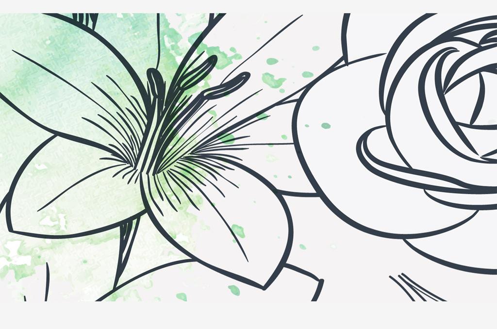 黑白手绘花朵电视背景图