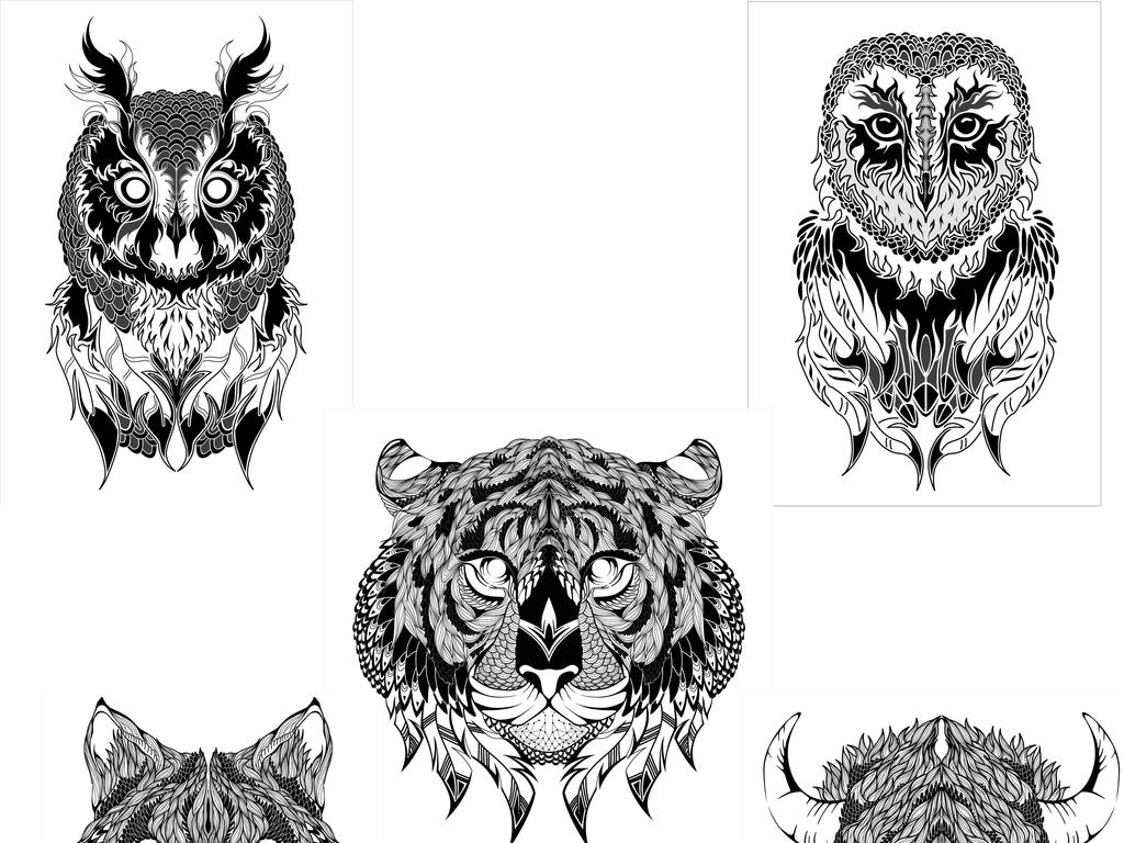 猫头鹰狼老虎水牛黑白图片素描画图案