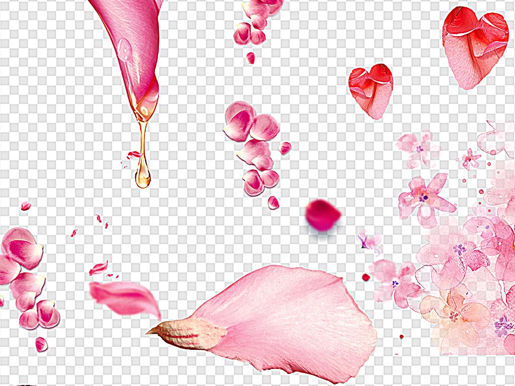 漂浮花瓣粉色花瓣樱花花瓣梅花花瓣