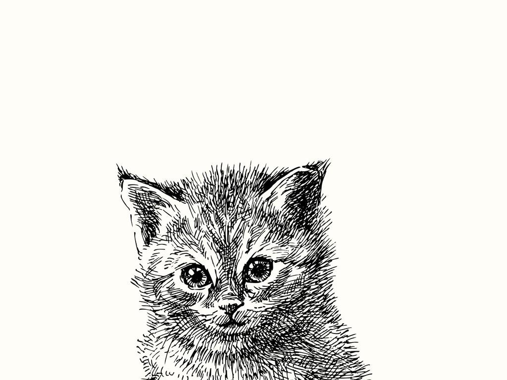 手绘卡通猫咪简笔插画黑白猫咪卡通动物