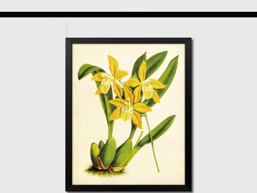 简约现代手绘植物花卉                                  北欧宜家