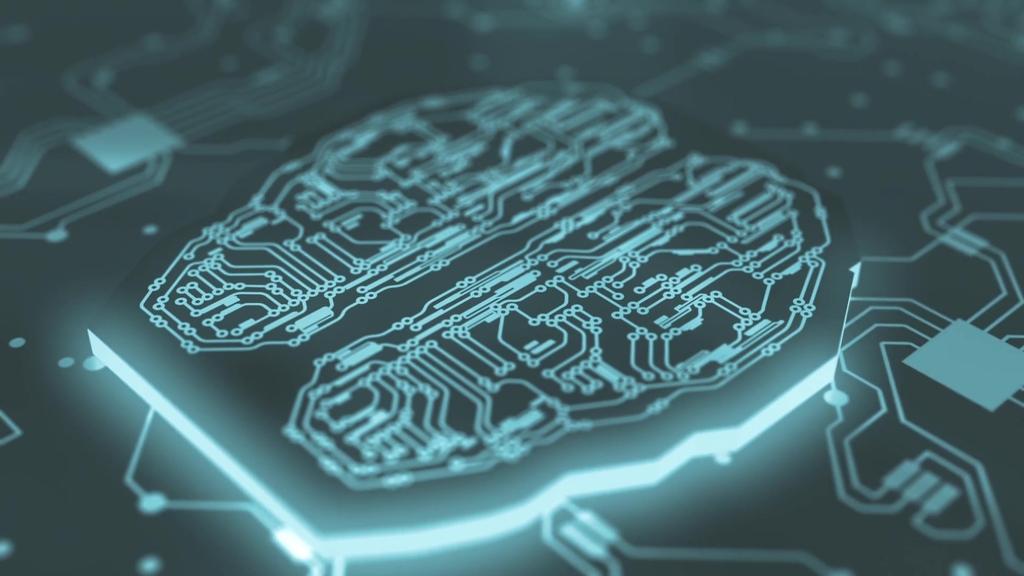 大脑电路板