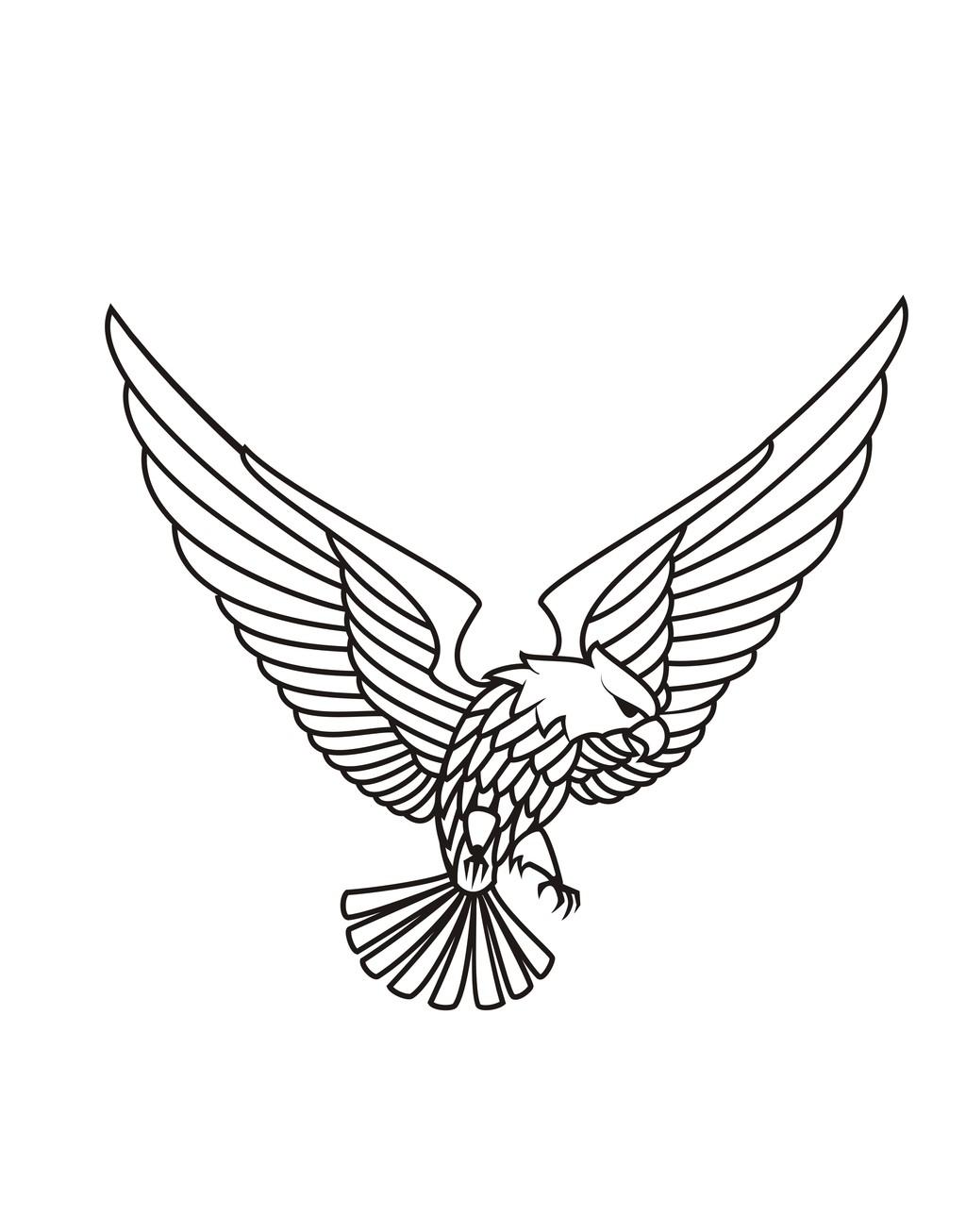 飞禽手绘简笔插画图片设计素材_高清其他模板下载(0.