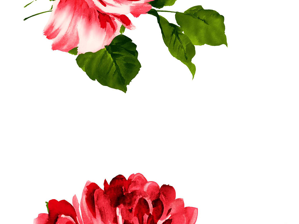 手绘水彩玫瑰高清大图psd素材
