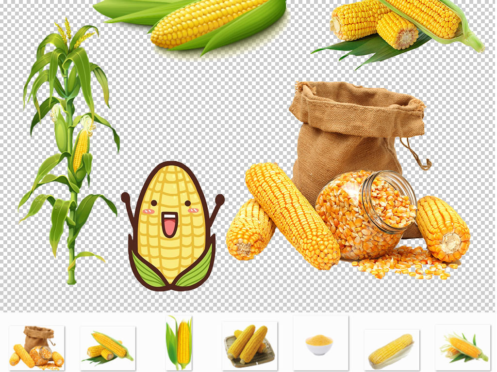 卡通苞米玉米素材设计图片