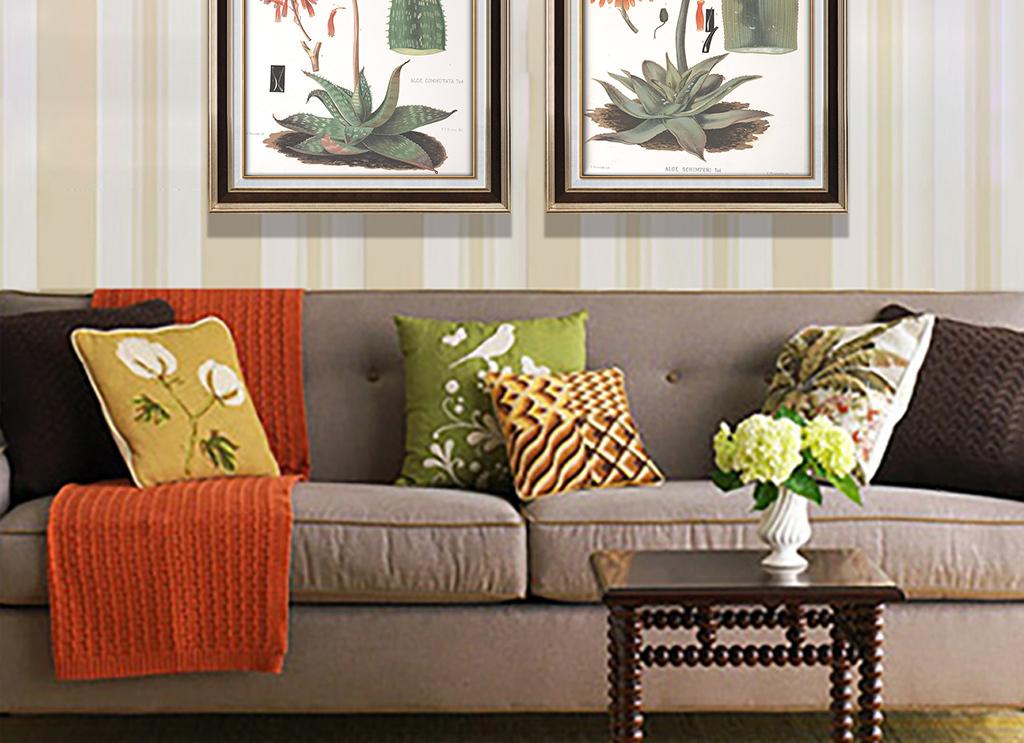 美式花卉芦荟标本植物装饰画图片