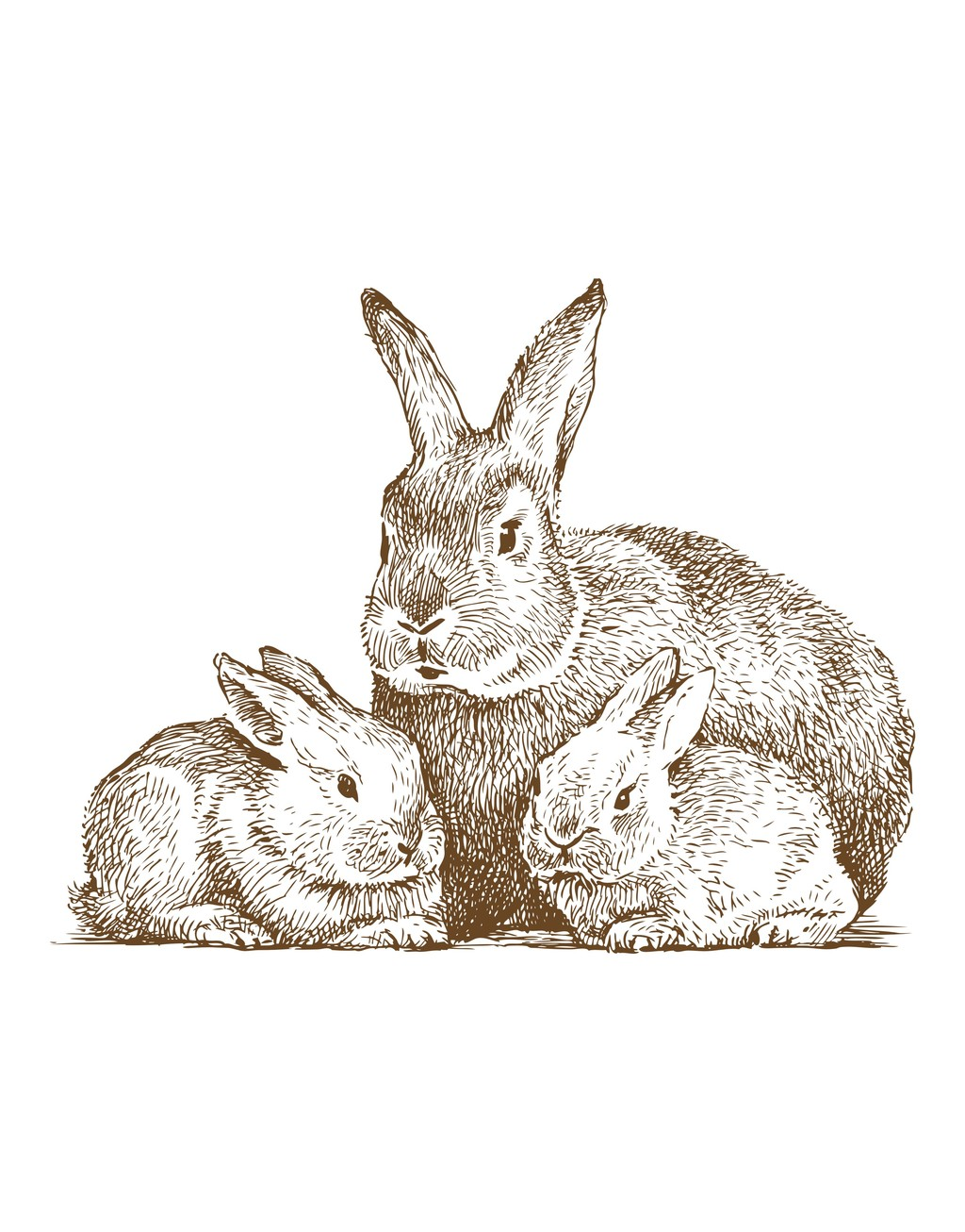 手绘动物简笔插画卡通动物兔子