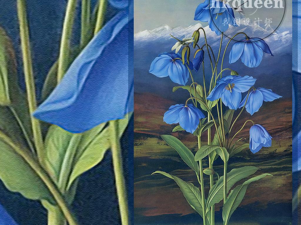 装饰画 北欧装饰画 植物花卉装饰画 > 蓝色小碎花风信子蜻蜓手绘花卉