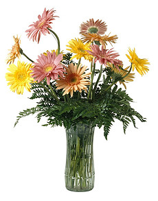 鲜花植物花艺插花花朵鲜艳花草摄影
