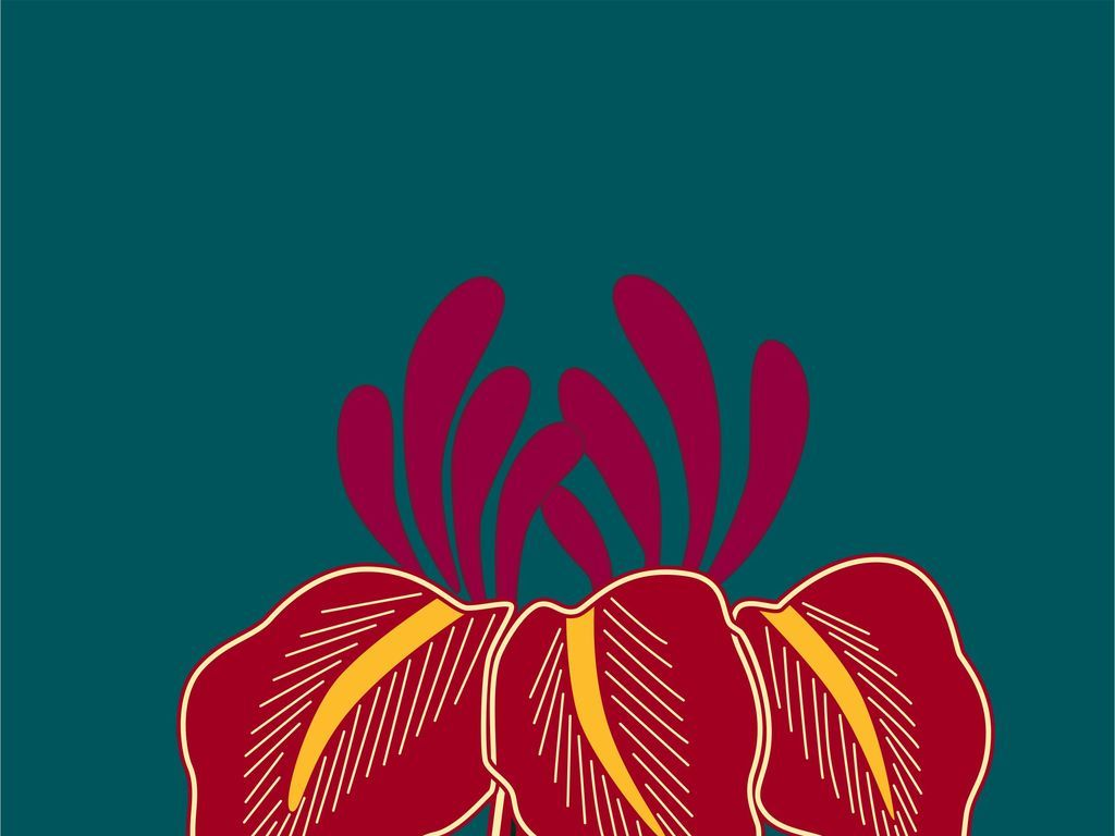 手绘t恤花卉