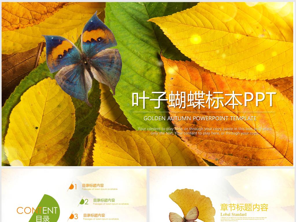 植物叶子蝴蝶标本ppt动态模板图片
