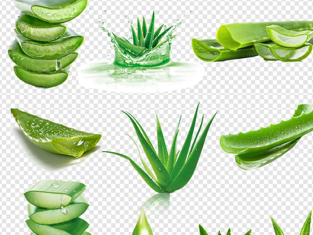 海报芦荟汁芦荟叶植物芦荟图片化妆品类目促销主图素材手绘芦荟芦荟水