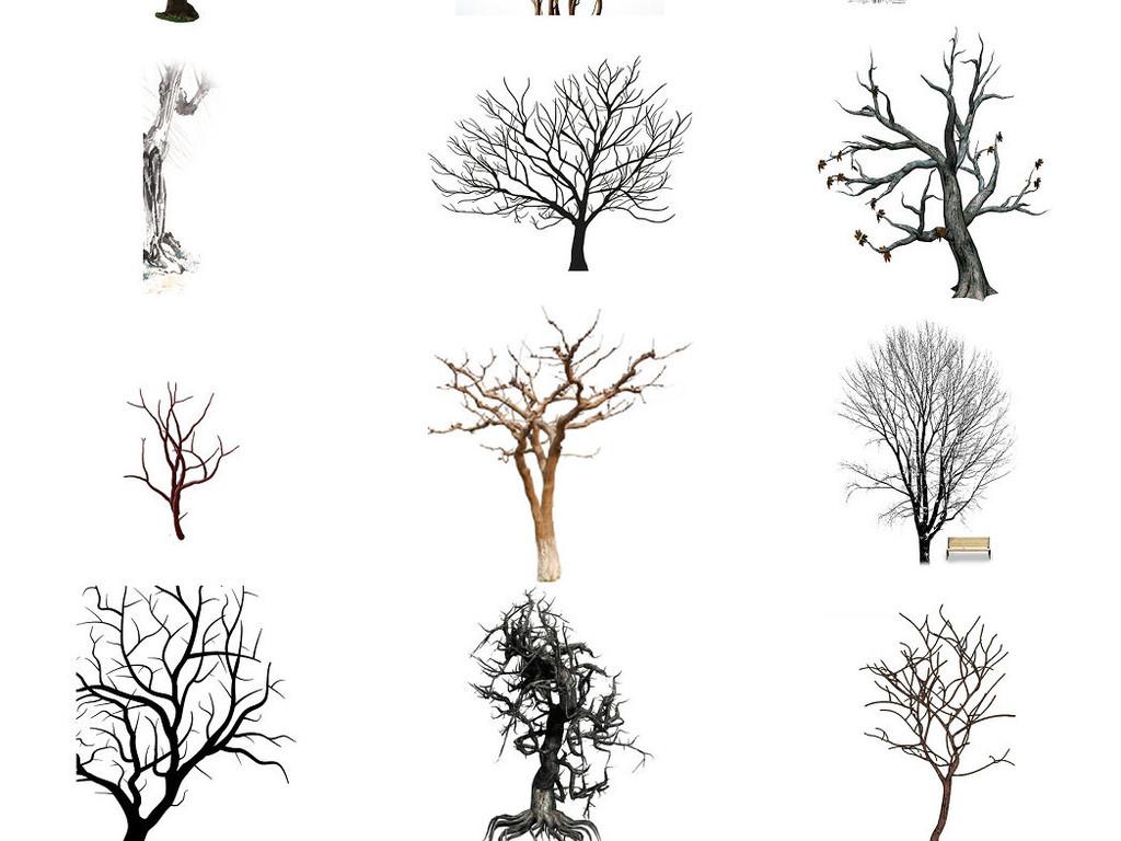 卡通枯树落叶海报设计元素2