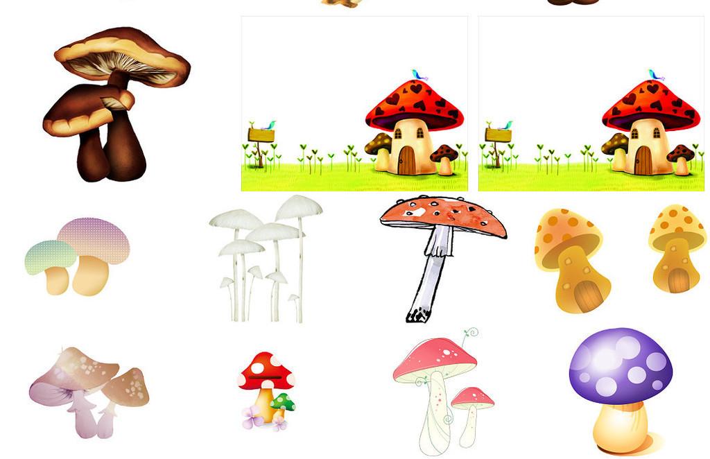 精美可爱蘑菇卡通免抠图片大全图片下载png素材 效果素材