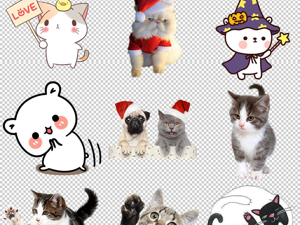 手绘动物猫咪表情包卡通表情包手绘猫咪猫头
