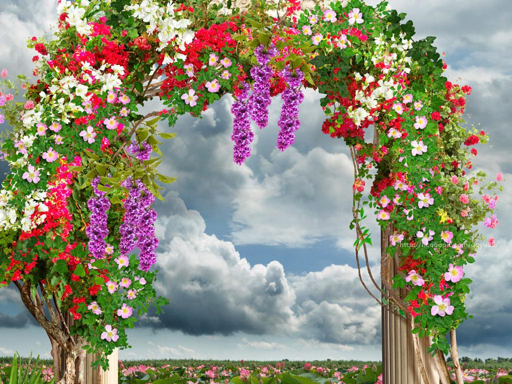 花园罗马柱拱门荷花风景3d玄关