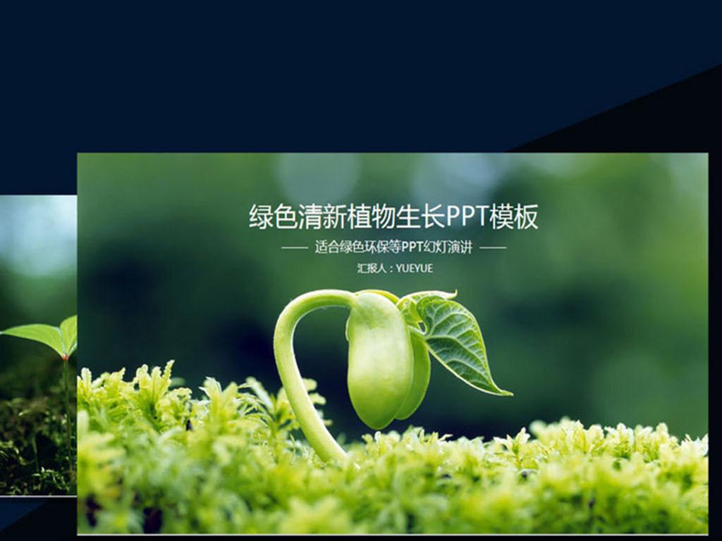 绿色清新植物生长ppt模板