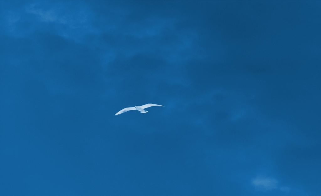 蓝天白云天空背景阳光天空太阳阳光