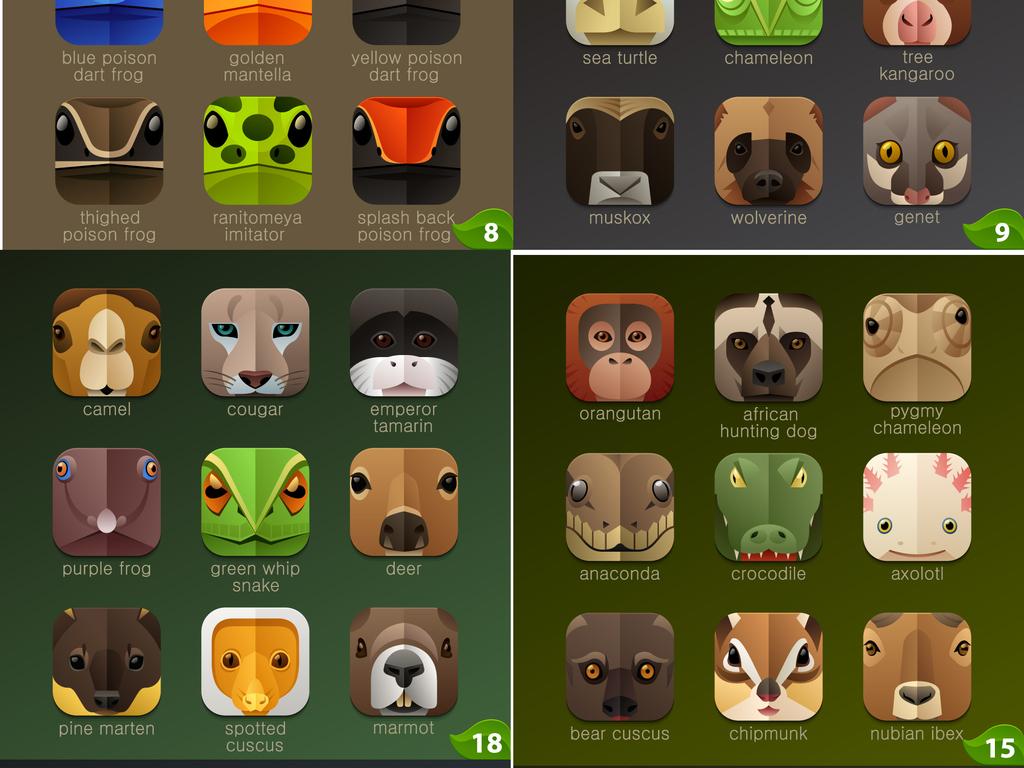 动物园幼儿园                                  十二生肖