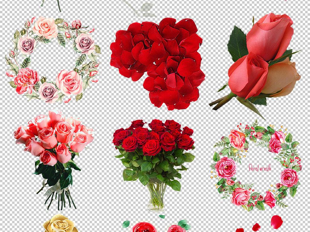 花瓣图片玫瑰花