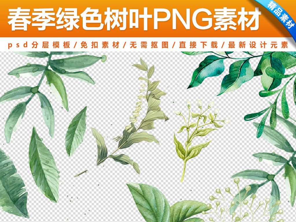 春季绿色树叶海报元素素材