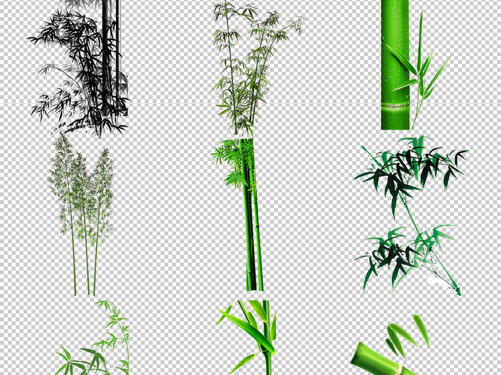 手绘竹子水彩竹子竹叶图案树叶青竹竹子图片绿色绿色竹子绿色图片水墨