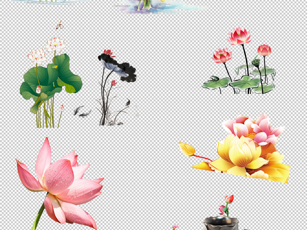 荷花花卉植物png素材