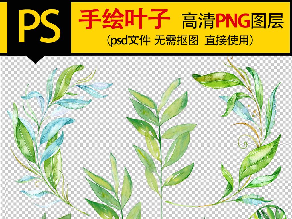 手绘叶子花朵png素材