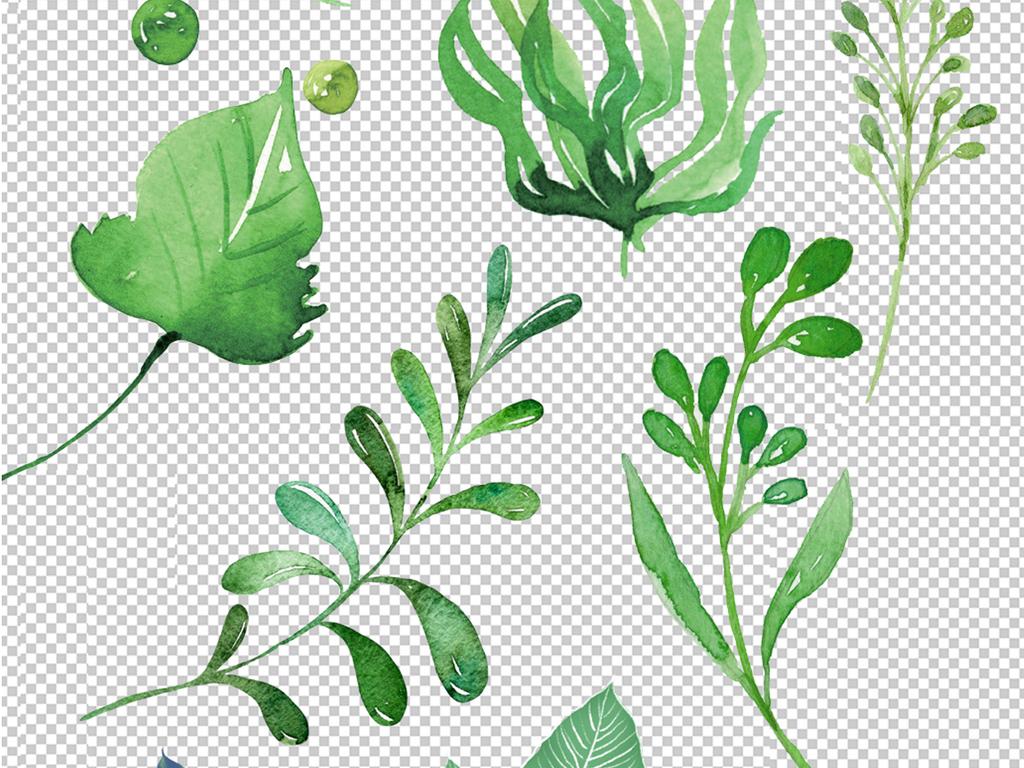 绿色树叶花纹背景                                  手绘树叶