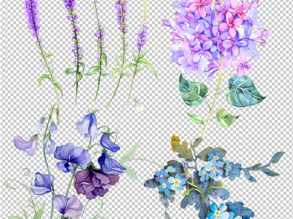 花朵叶子手绘叶圈花边手绘叶子绿叶叶子花朵手绘花朵素材花朵素材手绘