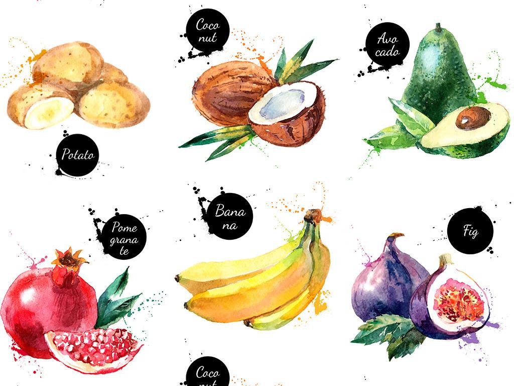 手绘水果图片集矢量素材图