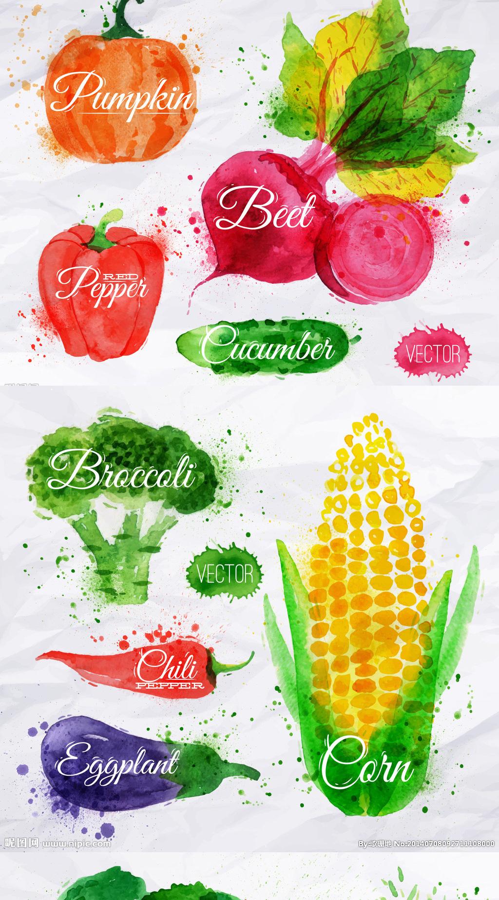 唯美手绘蔬菜水果图片集