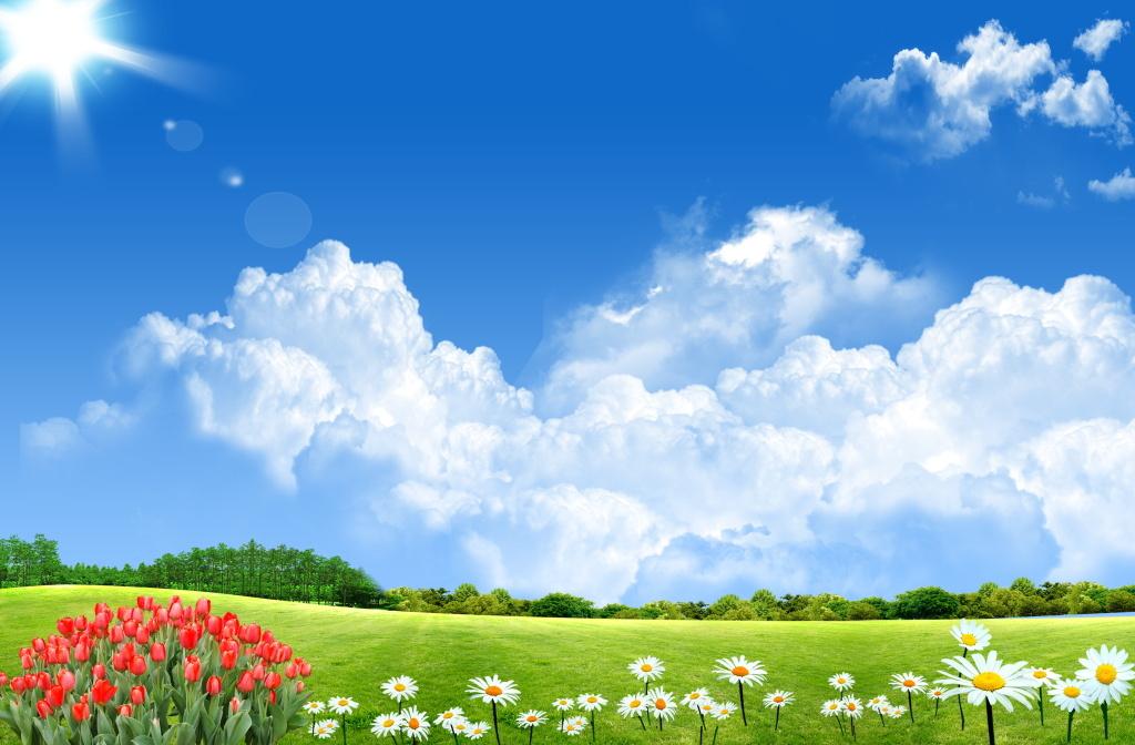 蓝天白云阳光下的草原风景图海报