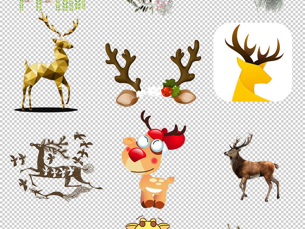 鹿头鹿角手绘鹿圣诞驯鹿圣诞小鹿