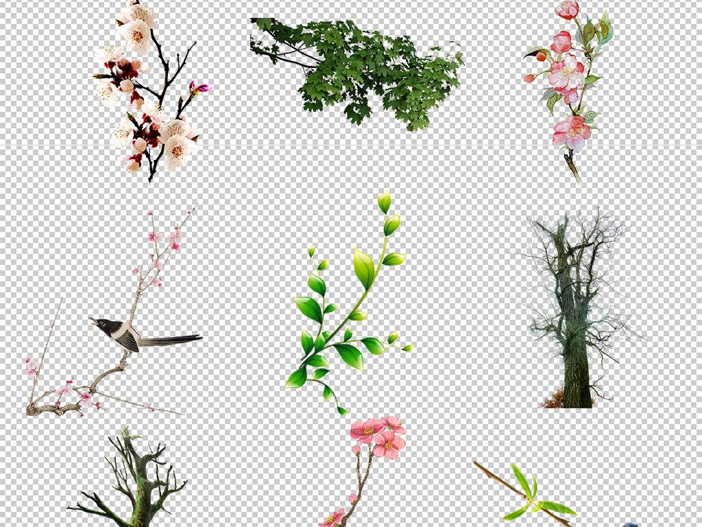 小清新手绘绿植物