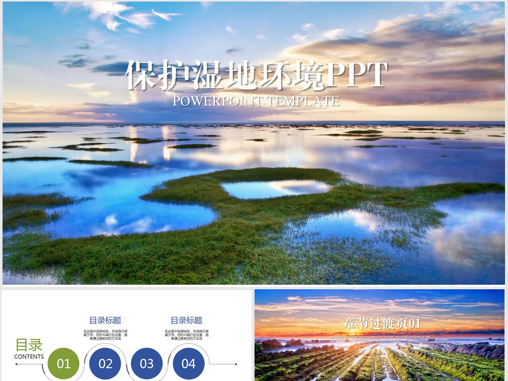 保护湿地生态环境ppt动态模板图片