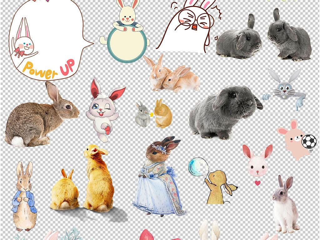 森系手绘水彩可爱兔子海报素材